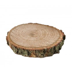 Ağaç Kütük Yükseltici Palamut Meşesi 5x1 Cm ( 5 Adet )