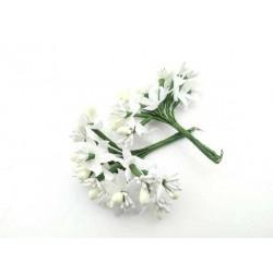 Çiçek  Cipso Krem 3x7 Cm ( 100 Adet )