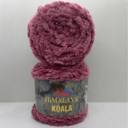 Himalaya Koala 75702